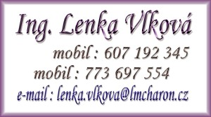 Lenka_Vlkova_2013
